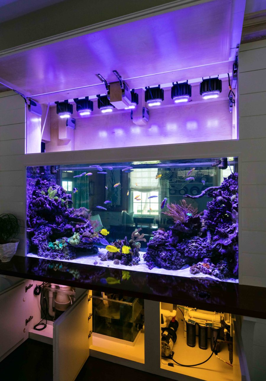 Custom Reef Tank