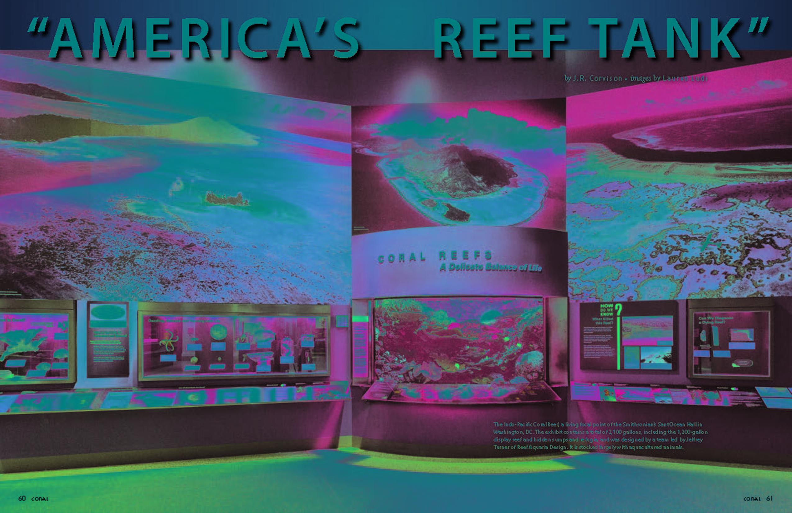 Americas's Reef Tank