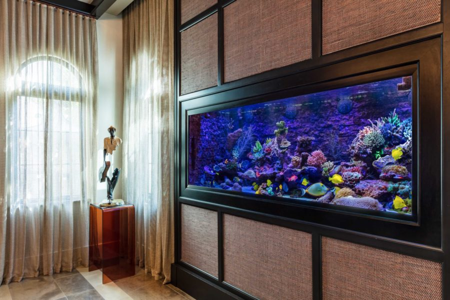 1000 Gallon Sun Powered Mixed Reef